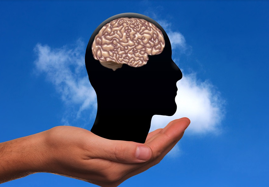 Mastering the Mind: 5 Great Things That Help Your Brain