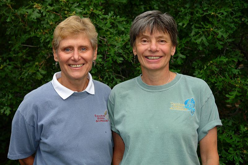 Amy Snow & Nancy Zidonis Traditional Chinese Medicine Practitioners & Instructors of Acupr