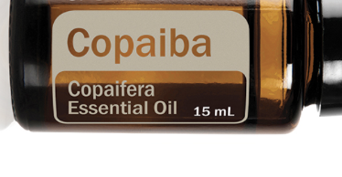 Seeking relief with Copaiba essential oil