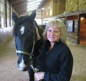 Equine-Acupressure- -Aromatherapy---Littleton,-CO